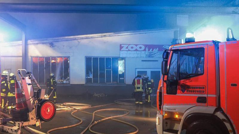 Feuerwehrleute löschen den Brand einer Zoohandlung in Remscheid. Foto: Tim Oelbermann/dpa