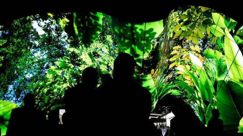 Grün ist hier nur das Bild auf den Fernsehschirmen. Wer beim Technikkauf auf Umweltschutz und Nachhaltigkeit achten will, muss danach länger suchen. Foto: Florian Schuh/dpa-tmn