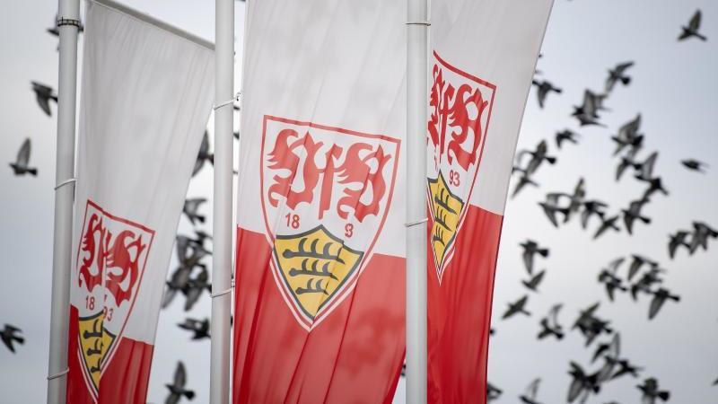 Flaggen mit dem Logo des VfB Stuttgart vor fliegenden Vögeln. Foto: Fabian Sommer/dpa/Archivbild