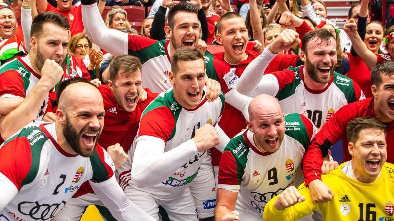 Die ungarischen Spieler feiern den Sieg über Island. Foto: Andreas Hillergren/TT NEWS AGENCY/dpa