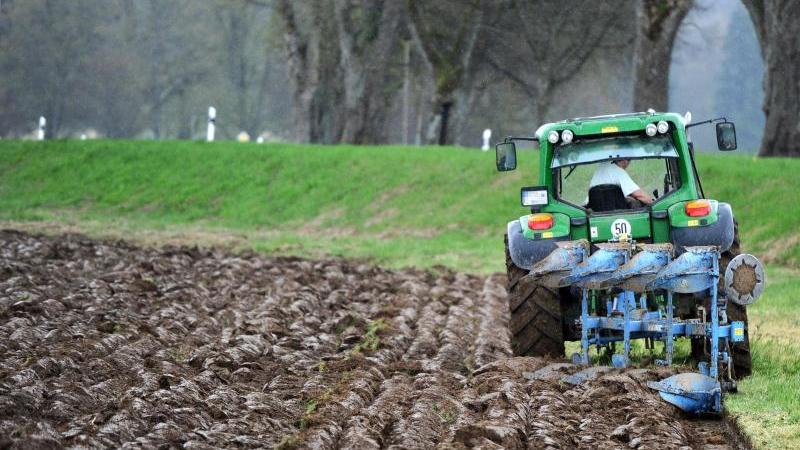 Ein Landwirt pflügt einen Acker. Foto: Daniel Bockwoldt/dpa/Archivbild