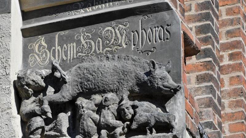 """Eine als """"Judensau"""" bezeichnete Schmähskulptur ist an der Außenwand der Stadtkirche Sankt Marien. Foto: Hendrik Schmidt/zb/dpa/Archivbild"""