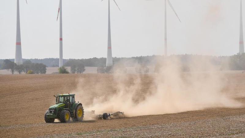 Ein Landwirt bearbeitet mit Traktor und Grubber den trocken Boden. Foto: Patrick Pleul/zb/dpa