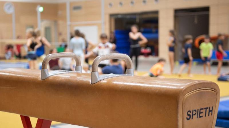 Ein Pauschenpferd steht in einer Sporthalle. Foto: Sebastian Kahnert/dpa-Zentralbild/dpa/Archivbild