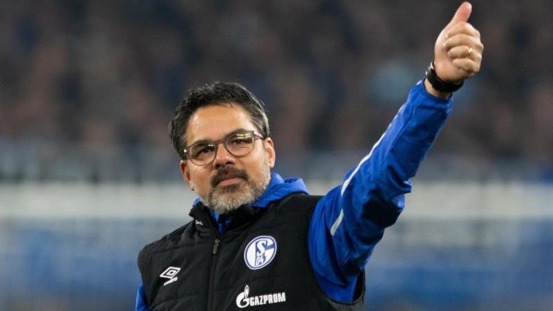 Schalkes Trainer David Wagner. Foto: Bernd Thissen/dpa/Archivbild