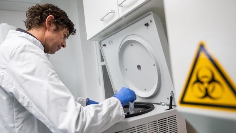 Laboruntersuchungen zum Coronavirus. Foto: Christophe Gateau/dpa/Archivbild