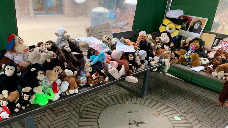Plüschtiere: Gedenken an Affenhaus-Brand im Krefelder Zoo