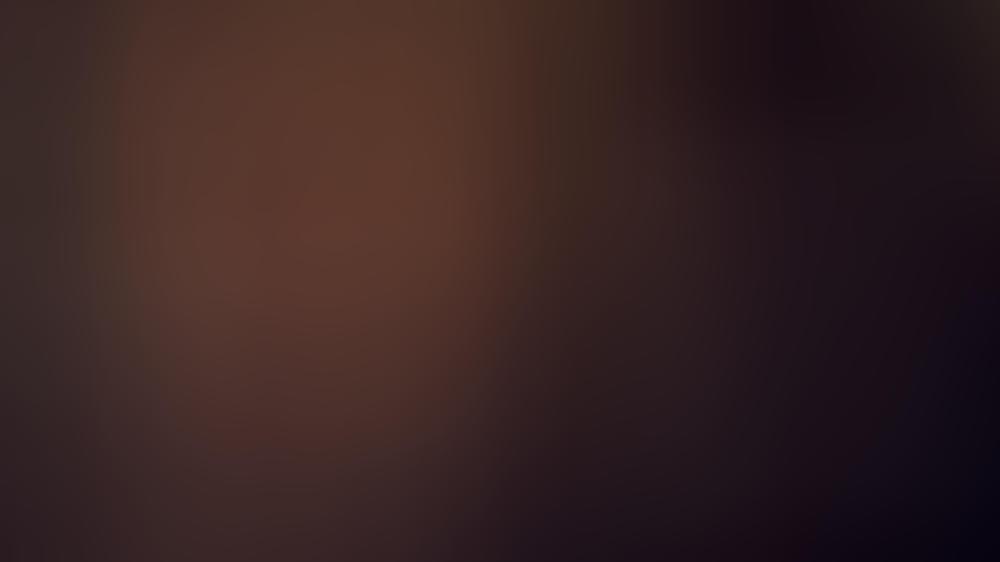 """Jagt als Dr. Peter Venkman wieder Geister: Bill Murray ist im neuen """"Ghostbusters""""-Film dabei."""