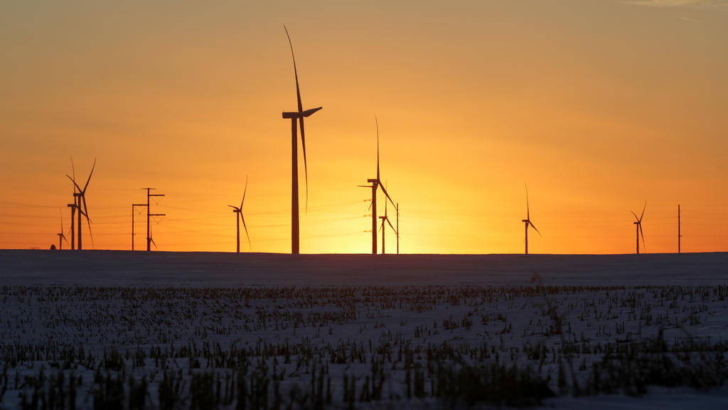 A wind farm shares space with corn fields the day before the Iowa caucuses, where agriculture and clean energy are key issues, in Latimer, Iowa, U.S. February 2, 2020. REUTERS/Jonathan Ernst