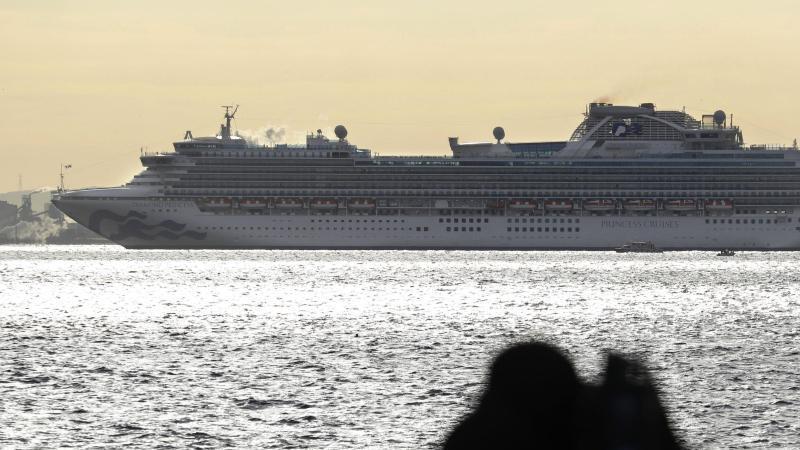 """Japan lässt Tausende von Passagieren auf einem Kreuzfahrtschiff auf das neue Coronavirus hin untersuchen. Hier die """"Diamond Princess"""". Foto: -/Kyodo News/AP/dpa"""