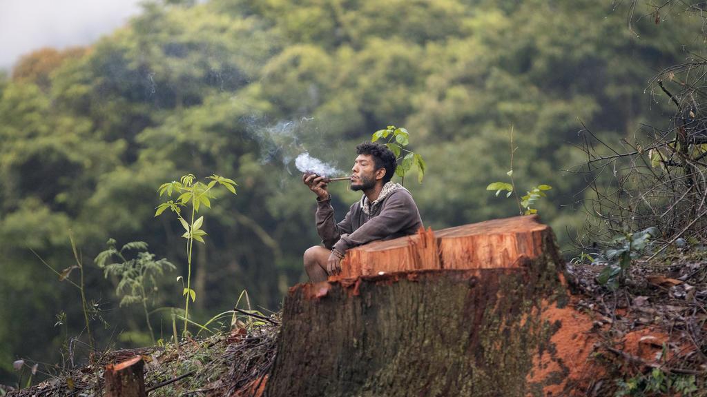 06.02.2020, Brasilien, Sao Paulo: Ein Mann des Stammes Guarani Mbya raucht eine Pfeife neben einem gefällten Baum. Dort besetzte eine Gruppe Indigener ein Grundstück als Protest gegen den Immobilienentwickler Tenda, der plant, neben dem Land einer in
