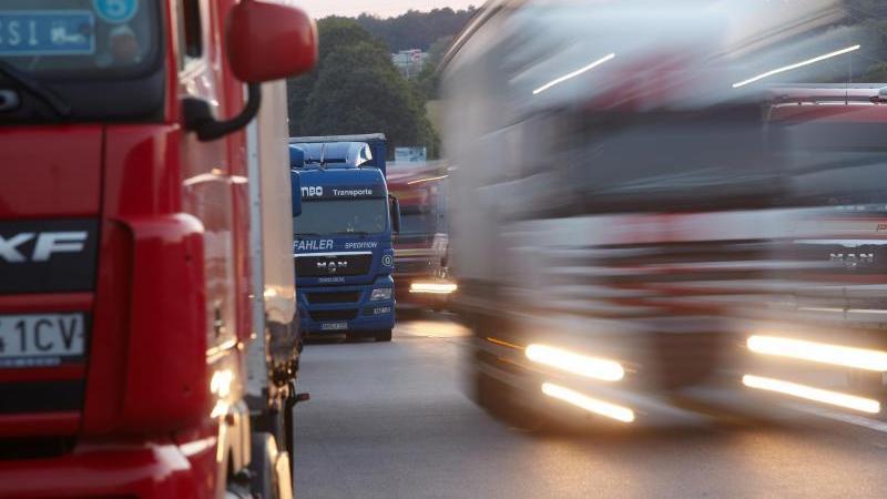 Lange LKW-Kolonnen stehen an einer Autobahn. Foto: Thomas Frey/dpa/Archivbild