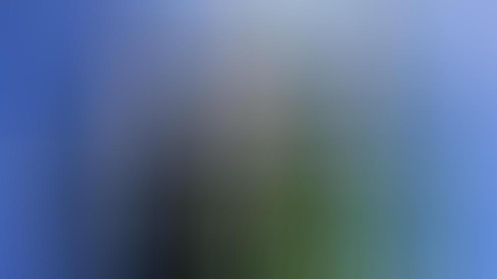 """Fürst Albert II. und Sharon Stone bei der """"Global Ocean Gala"""" in Los Angeles"""