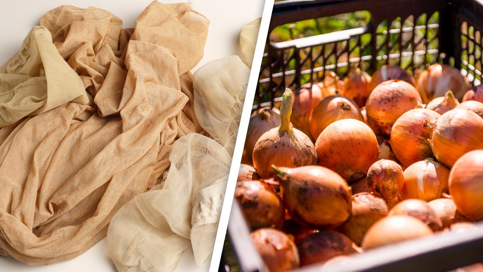 Wie können Strumpfhosen wohl dabei helfen, Zwiebeln frisch zu halten?