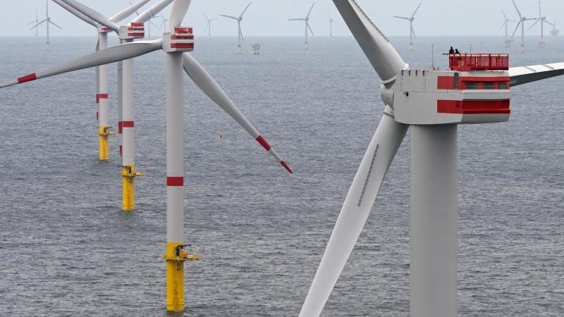 Die Windkraftwerke in der Nordsee haben 2019 rund 21 Prozent mehr Strom geliefert als im Vorjahr. Foto: Ingo Wagner/dpa/Archivbild