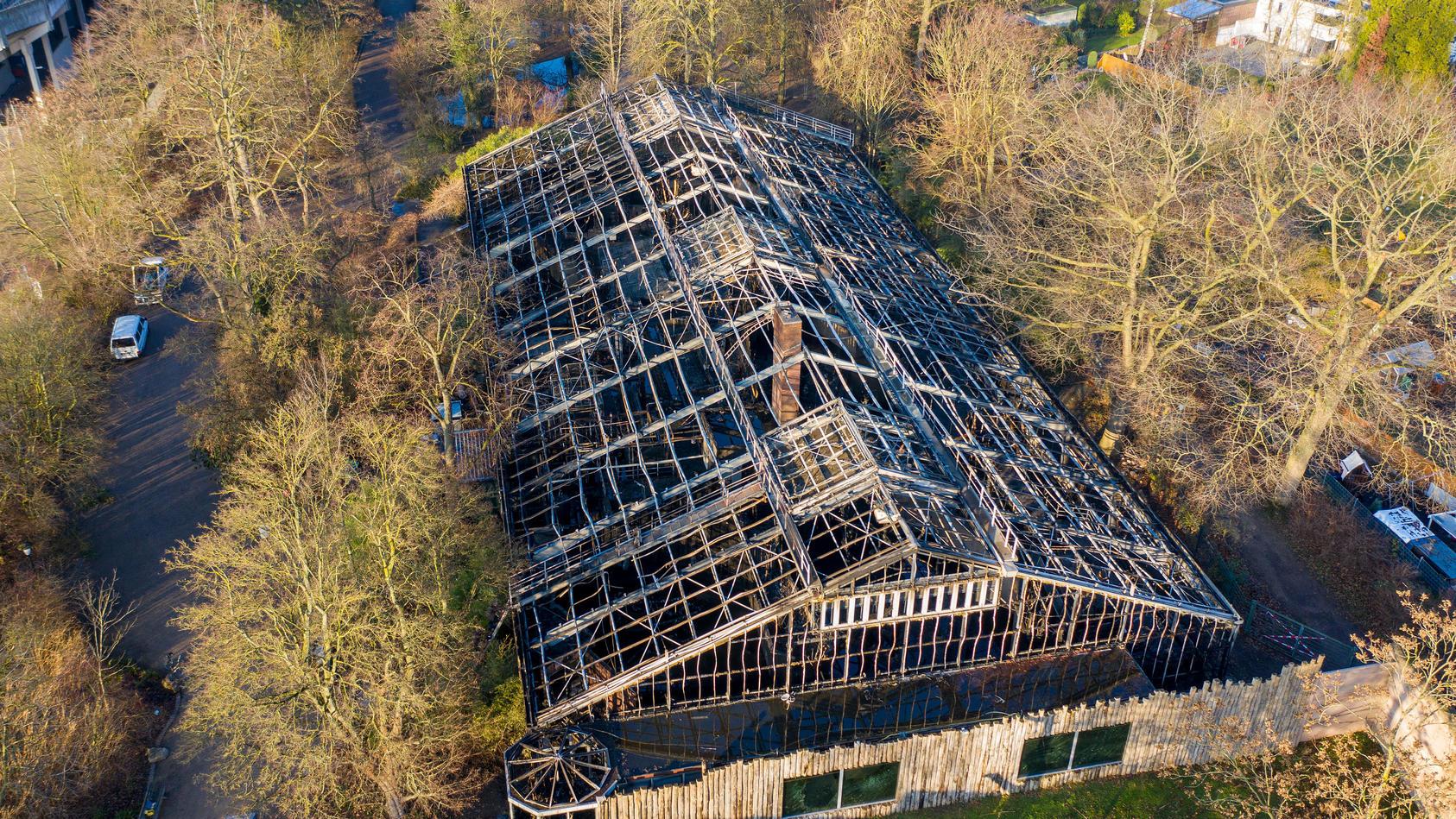 Das komplett zerstörte Affenhaus des Krefelder Zoos soll bis Jahresende abgerissen werden.