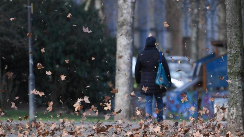 Heftige Windböen wirbeln Blätter hoch. Foto: Arne Dedert/dpa