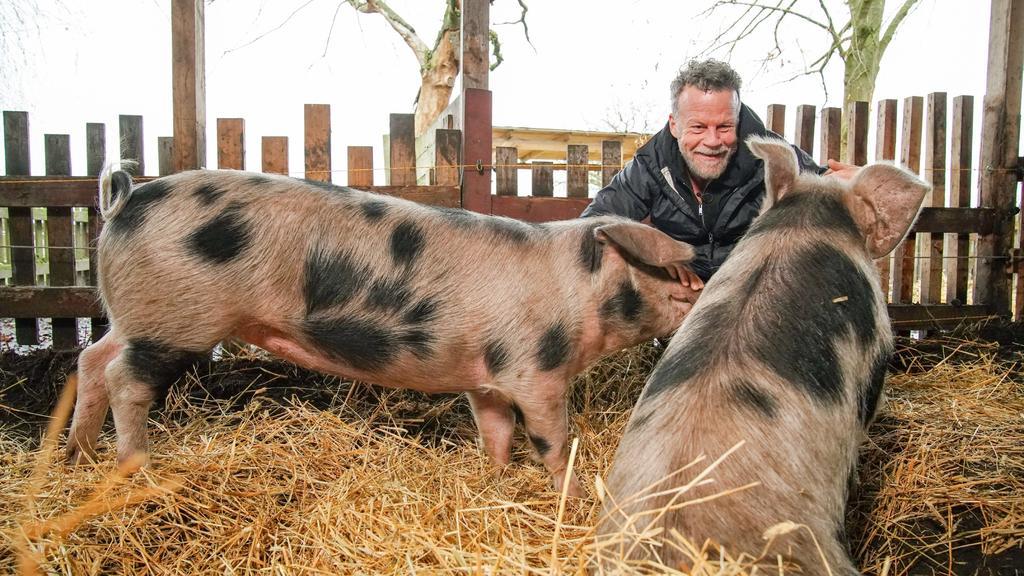 Jenke von Wilmsdorff mit den Schweinen Elsa und Schmali.