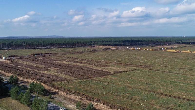 Die gerodete Waldfläche auf dem Gelände der künftigen Tesla Gigafactory. Foto: Patrick Pleul/dpa-Zentralbild/dpa