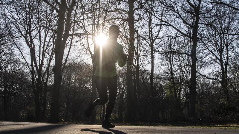 Ein Mann läuft am Morgen im Tiergarten. Foto: Paul Zinken/dpa-zb-Zentralbild/dpa