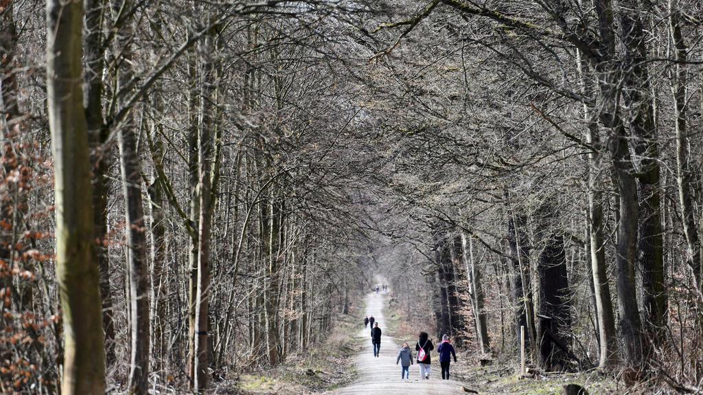 Frühling in Thüringen