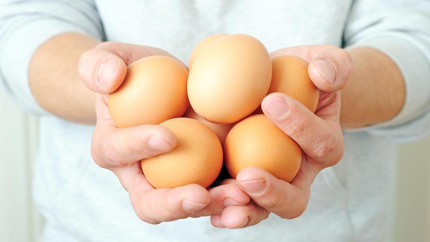 Die richtige Ei-Dosis kann sehr gesund sein