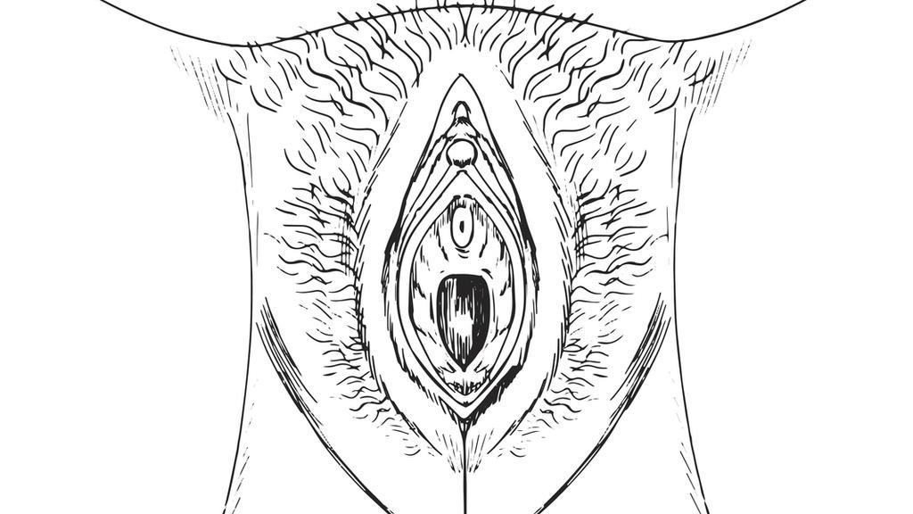 Ein Anfang: sich mit der Anatomie des eigenen Geschlechts vertraut machen