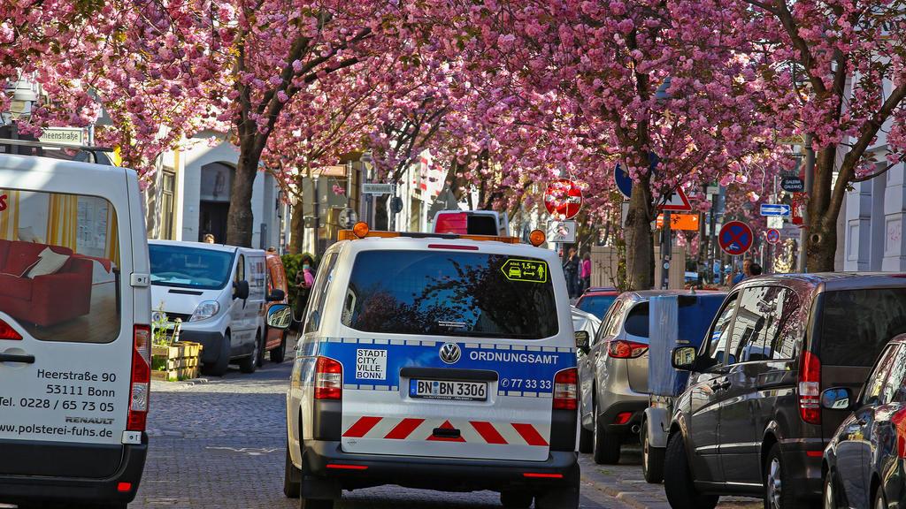 Traumwetter bei angenehmen Temperaturen, Baumbluete, Kirschbluete in der Heerstrasse in Bonn, dass Ordnungsamt ist unterwegs und schaut ob die Vorgaben wegen des Coronavirus eingehalten werden Fruehling in NRW am 06.04.2020 in Bonn/Deutschland. ACHT
