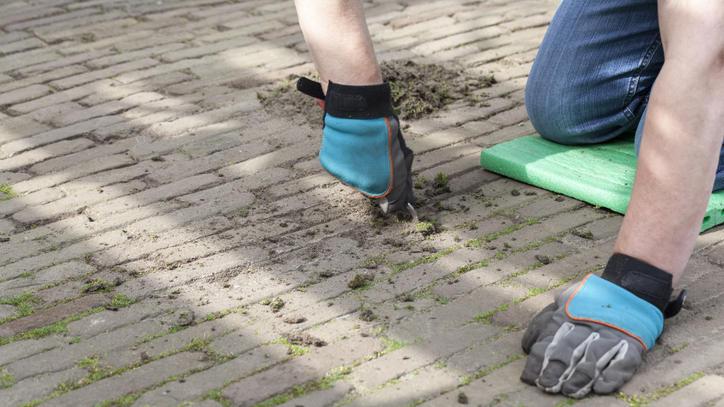 Wer eine saubere Terrasse haben will, muss erst lästiges Moos entfernen