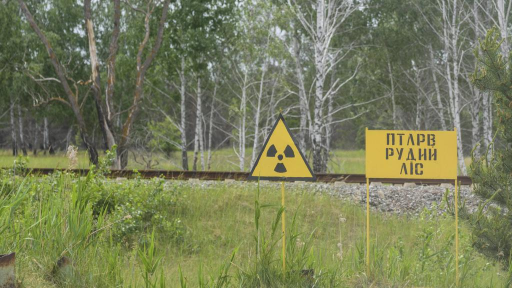 warning sign to radioactivity, view to Red Forest is the 10-square-kilometer 4 sq mi area surrounding the Chernobyl Nuclear Power Plant within the Exclusion Zone Pripyat Prypiat Kiev Oblast Ukraine Chernobyl Chornobyl Exclusion
