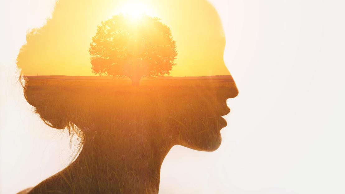 Das richtige Mindset kommt mit der Lebenserfahrung. Bücher beschleunigen diese Entwicklung