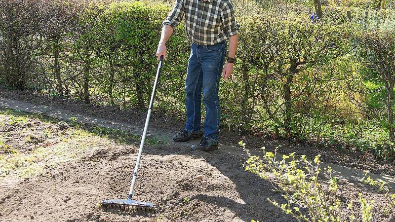 Die richtige Größe: Mindestens 160 Zentimeter sollte der Stiel von Gartengeräten lang sein - dann arbeitet es sich angenehm und schmerzfrei. Foto: selbst ist der Mann/dpa-tmn