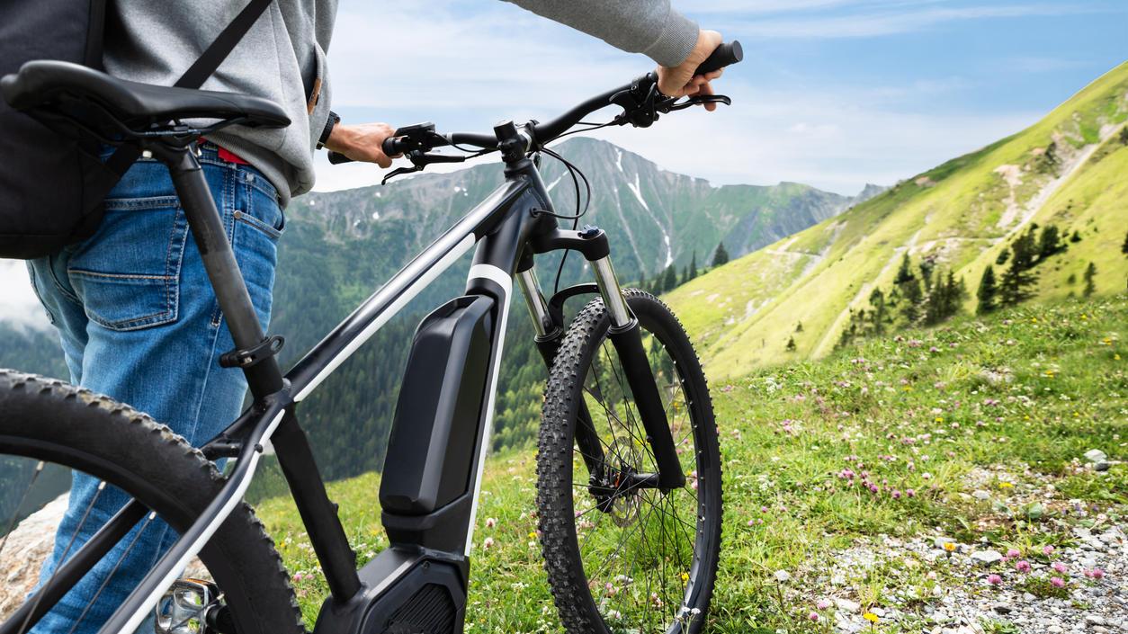 Wer sein Fahrrad liebt, der schiebt - ob das auch für Pedelecs gilt?