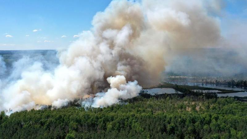 Blick auf eine Rauchwolke während eines Waldbrandes im Loben-Moor bei Plessa. Foto: Veit Rösler/dpa-Zentralbild/dpa