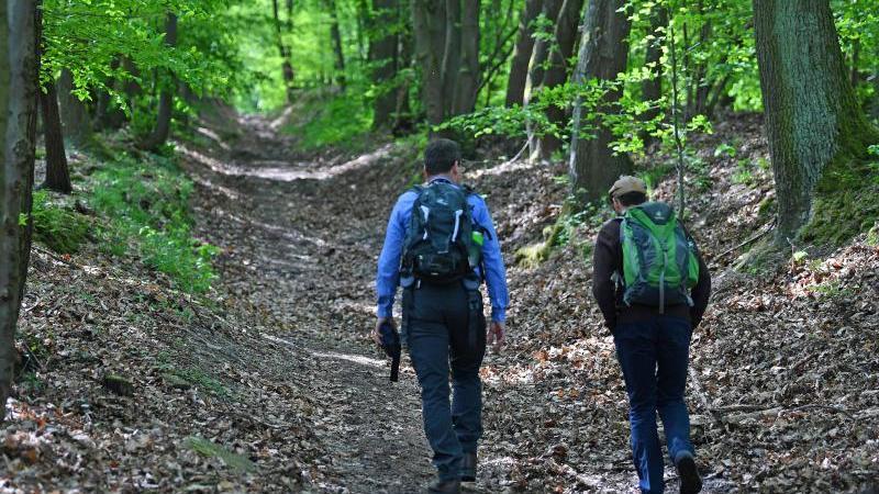 Zwei Männer wandern durch den Wald. Foto: Martin Schutt/dpa-Zentralbild/dpa/Symbolbild