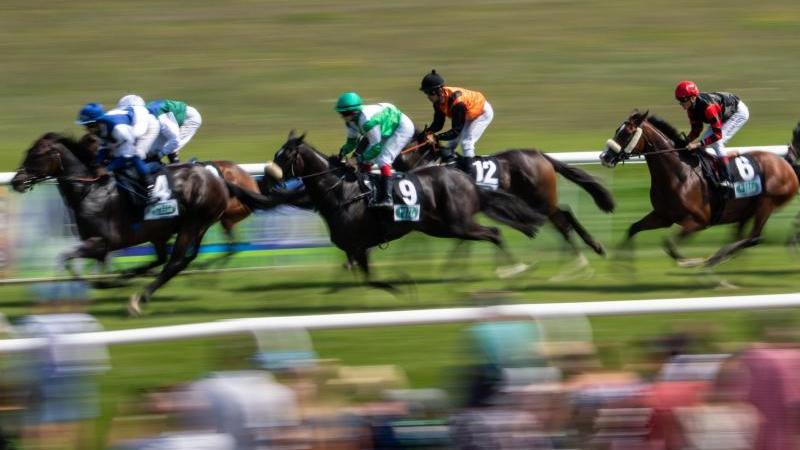 Jockeys reiten auf ihren Pferden auf der Galopprennbahn Dresden-Seidnitz. Foto: Robert Michael/dpa/Symbolbild