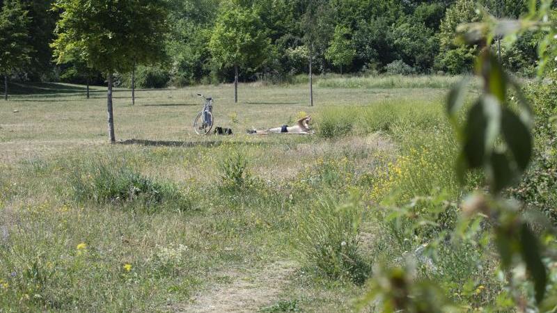 Ausgetrocknet präsentiert sich der Rasen in diesem Park. Foto: Sebastian Kramer/dpa