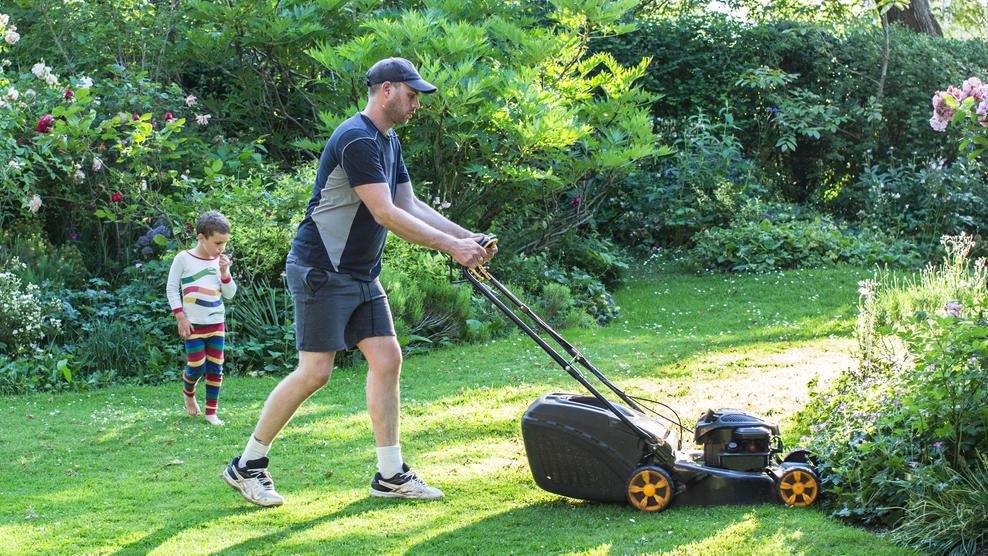 Den Garten auf Vordermann bringen: Diese Geräte sind Pflicht!