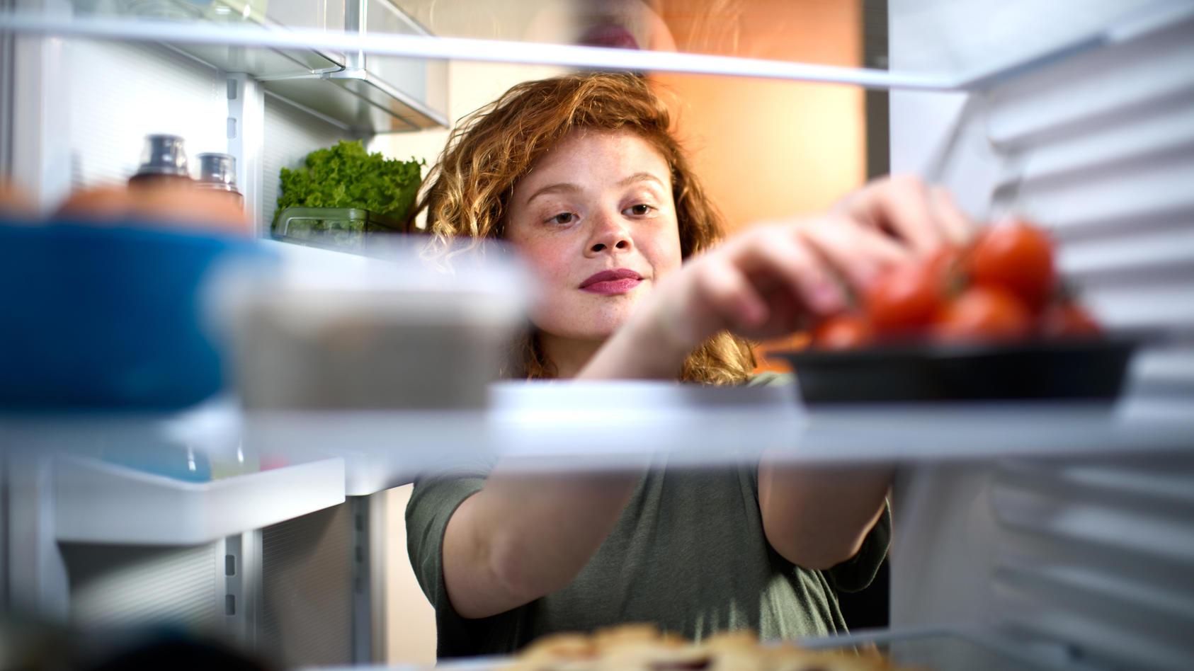 Kühlschränke sind in jedem Haushalt unverzichtbar. Es gibt jedoch viele Modelle, die vom Standard abweichen.