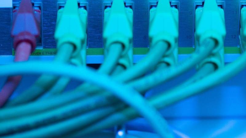 Netzwerkkabel in einem Serverraum. Foto: Sebastian Kahnert/zb/dpa/Symbolbild