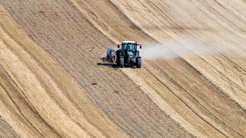 Eine Staubwolke zieht ein Traktor beim Striegeln auf einem abgeernteten Getreidefeld hinter sich her. Foto: Jens Büttner/zb/dpa