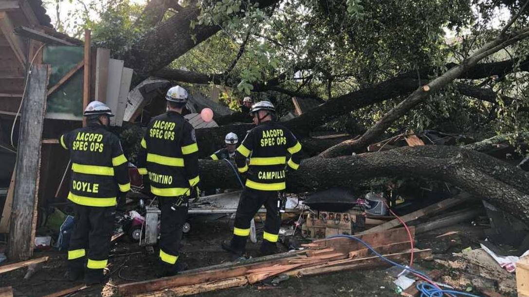 In Pasadena stürzte ein Baum auf ein Gebäude und verletzte mehr als 20 Menschen