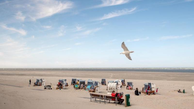 Eine Möwe fliegt über die Strandkörbe am Strand von Spiekeroog. Foto: Sina Schuldt/dpa/Archivbild