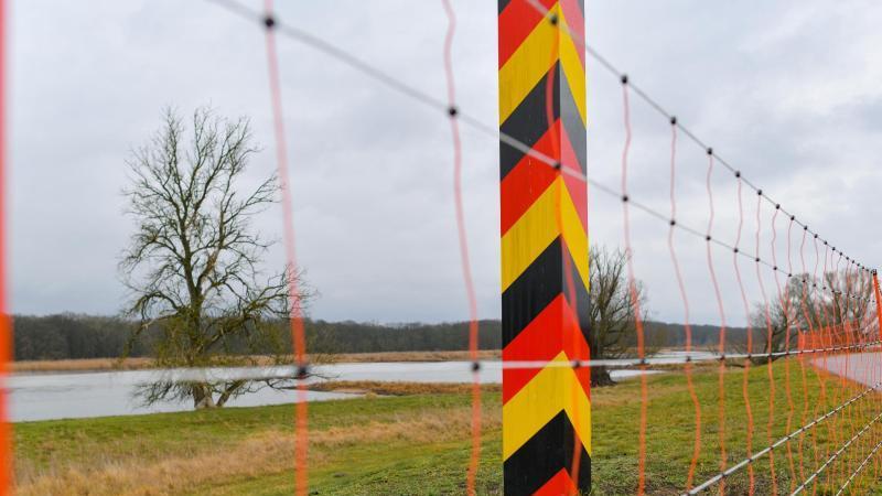 An einem Grenzpfeiler auf dem Deich an der Oder steht ein Schutzzaun gegen die Afrikanische Schweinepest. Foto: Patrick Pleul/dpa-Zentralbild/dpa/Symbolbild