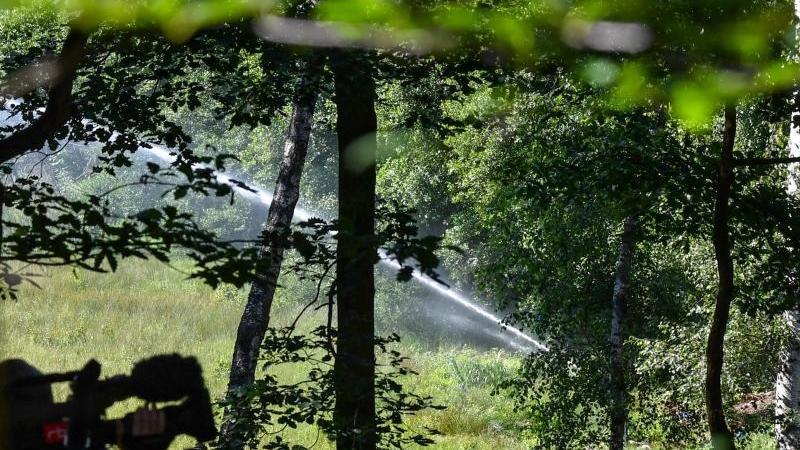 Bewässerung des Barssee im Grundwald. Foto: Jens Kalaene/dpa-Zentralbild/dpa