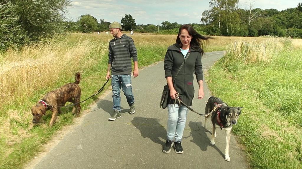 Nina B. geht mit ihrem Freund und ihren Hunden spazieren