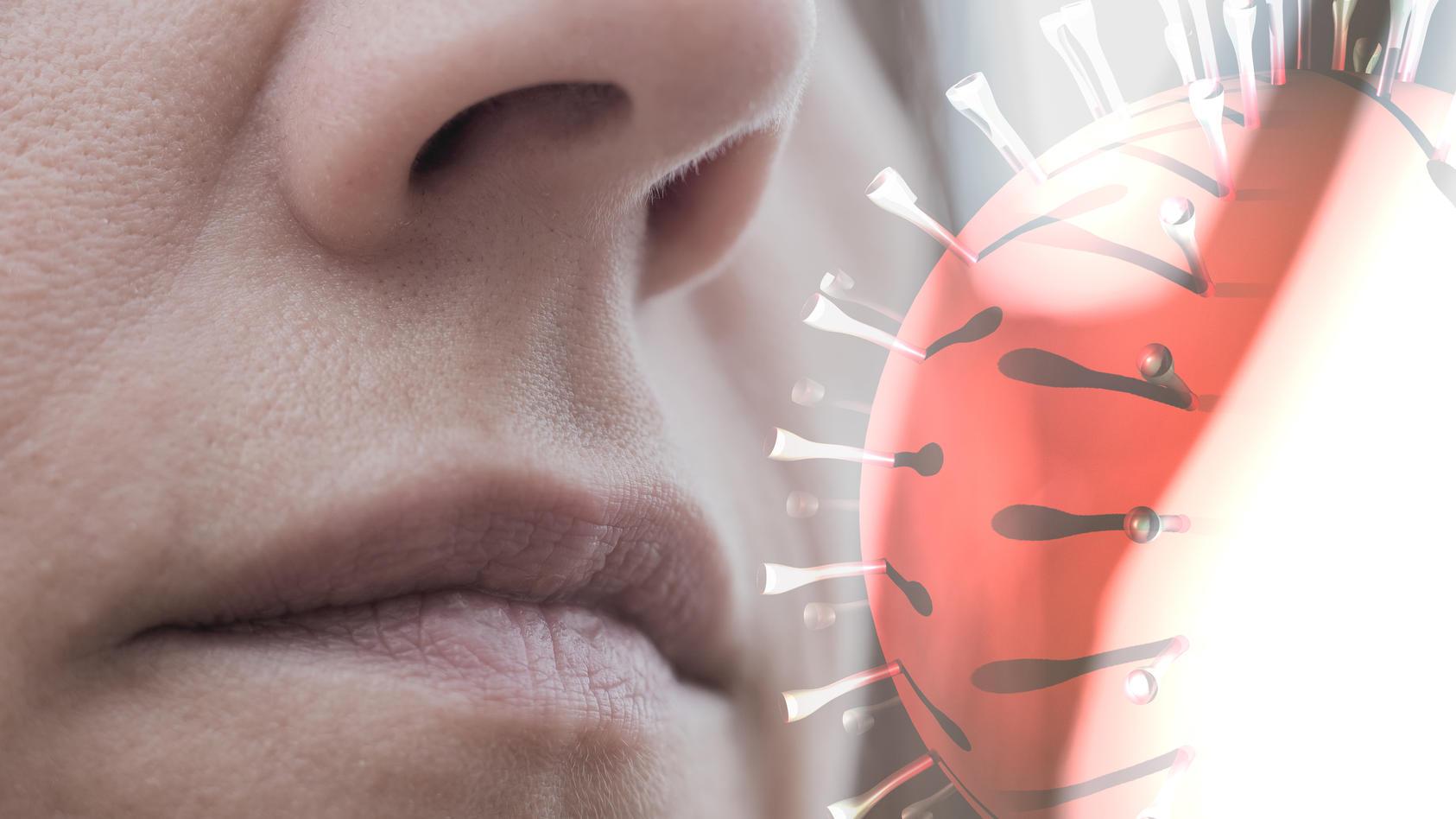 Schützen uns frühere Erkältungen vor dem Coronavirus?