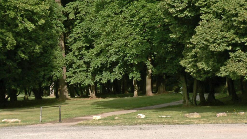 Schlosspark in Sondershausen