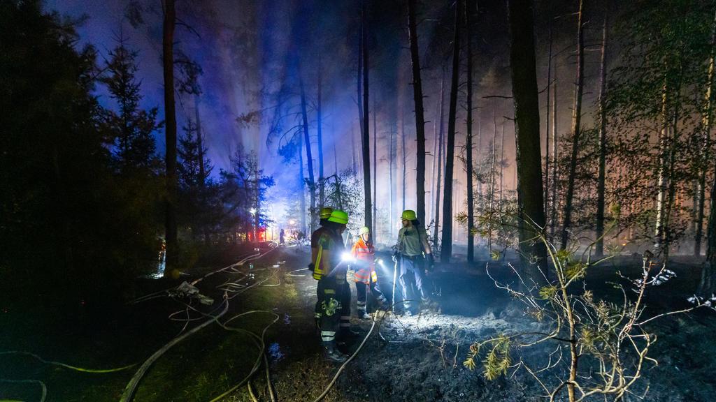 dpatopbilder - 12.08.2020, Niedersachsen, Essel: Einsatzkräfte der Feuerwehr führen Nachlöscharbeiten in einem Waldstück durch. Wegen eines großflächigen Brandes im Heidekreis ist das Wochenendgebiet Esseler Wald am Mittwochabend nach Polizeiangaben