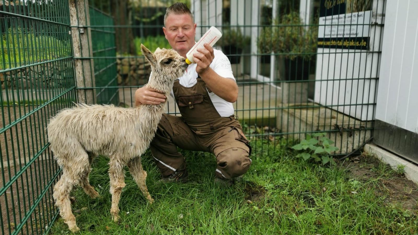 Bauer Henry freut sich über tierischen Nachwuchs.